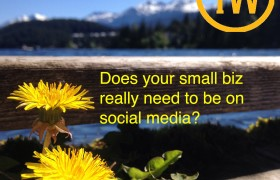 Social Media for Small Biz = Big Value