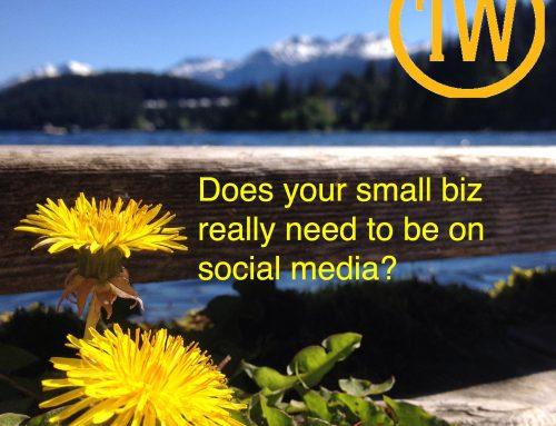 Social Media for Small Biz = Big Value